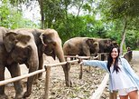 Elephant Haven Kanchanaburi with Private Transfer from Bangkok. Bangkok, Thailand