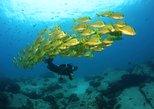 Descubra a Experiência de mergulho com scuba para iniciantes com a MANTA. Los Cabos, MÉXICO