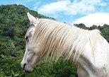 The best horseback riding at Lake Atitlan to lookout point to see Lake and vista. San Pedro La Laguna, Guatemala