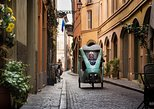 The beauty of Parma - Two Hours Rickshaw Tour, Parma, ITALIA