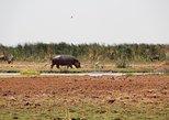 3 Days Lodge Safari. Arusha, Tanzania