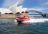 Passeio em Jetboat pelo Porto de Sydney: 30 minutos,