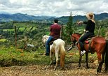 Horseback Riding in Medellin: Private Tour,