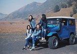 Mount Bromo and Kawah Ijen tour (3D2N) 2 person minimum apply. Surabaya, Indonesia