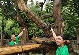 Chengdu Panda Rescue Center Volunteer for a Day Experience. Chengdu, CHINA