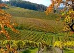 Private wine tour in Bergerac region by EXPLOREO, Bergerac, FRANCIA