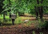 Alba Truffle Hunting Tour Experience in Piemont, Langhe-Roero y Monferrato, Itália