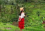 Best of Ubud: Nature, Temple, Rice Terrace, Waterfall and Coffee Tour, ,