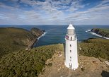 Bruny Island with Lighthouse Tour and Food Samples from Hobart. Hobart, AUSTRALIA