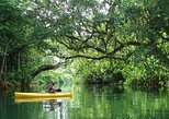 Small Group Kayaking Tour on the Rentapao River from Port Vila. Port Vila, VANUATU