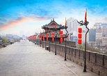 Recorrido privado de un día: Guerreros de terracota, Pequeña Pagoda del Ganso Salvaje, muralla de la ciudad y barrio musulmán. Sian, CHINA