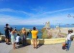 Paseo Por Centro Historico de Mazatlan, Compras y Playa,