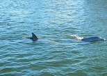 Two-hour boat tour of the Indian River Lagoon. Cocoa Beach, FL, UNITED STATES