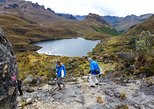 Full day Cajas National Park,