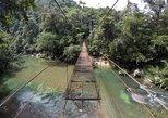Excursion Privada A Rio Claro, Naturaleza Abundante Y Aguas Cristalinas,