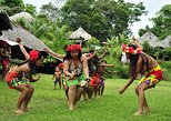 Cultural Exchange with the Embera Community - Day tour, Ciudad de Panama, PANAMA