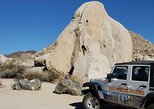 Joshua Tree National Park 4.5-Hour Van Tour with Guide. Palm Springs, CA, UNITED STATES