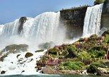 Small Group Niagara Falls American & Canadian Side ComboTour and Boat Ride. Cataratas del Niagara, NY, UNITED STATES