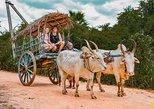 Sigiriya Cultural Village Tour & Minneriya Safari. Anuradhapura, Sri Lanka