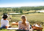 Audrey Wilkinson Vineyard: Picnic, Wine Class, Tasting. Hunter Valley, AUSTRALIA