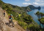 Sea to Summit- Electric Mountain Biking Tour in Akaroa, Canterbury, NOVA ZELÂNDIA