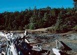 Water taxi to Discovery Island Marine Provincial Park, Isla de Vancouver, CANADA