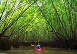 Kayak Tour in Lagoon, Canyon, Mangrove 08 AM - 12.30 PM. Krabi, Thailand