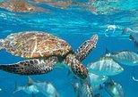 Surin Islands Snorkeling Trip from Khao Lak. Khao Lak, Thailand