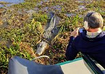 Florida Everglades Airboat Tour, Wild Florida from Orlando,