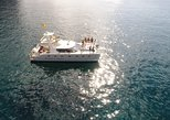 Whale Watching Catamaran Cruise with Snorkeling and Transfers. Tenerife, Spain