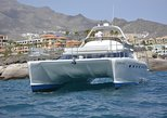12 Person Whale Watching Catamaran Cruise with Snorkeling and Free Transfers. Tenerife, Spain