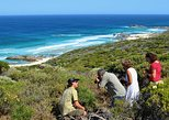 Margaret River Coastal and Wildlife Eco Trip from Busselton or Dunsborough, Busselton, AUSTRALIA