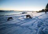 El fiordo del círculo polar ártico, montaña y excursión por el mar desde Tromso. Tromso, NORUEGA