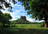 Sigiriya Rock and Wild Elephant Safari from Negombo (Private Day Tour). Sigiriya, Sri Lanka