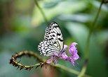 Entrada do Cockrell Butterfly Center em Houston. Houston, TX, ESTADOS UNIDOS