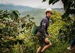 Guatape & the rock + Coffee experience,