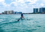 Jet Ski Dolphin & Island Excursion - 2 Hours. Clearwater, FL, UNITED STATES
