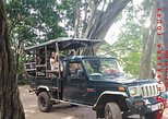 A Udawalawa safari day tour from Galle / Colombo (All inclusive tour ). Colombo, Sri Lanka