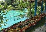 Port Vila Full Day Tour - Experience the Real Vanuatu. Port Vila, VANUATU