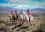 Full Day Campestre; al pie de la Cordillera de los Andes, Mendoza, ARGENTINA