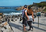 Private Tour: Cape of Good Hope and Cape Point from Cape Town,