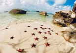 Land Tour 2: Discover the North - Kayaking & Starfish beach Phu Quoc. Phu Quoc, Vietnam