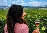 Viagem diurna vínícola de Paris a Champanhe,