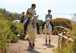 Exclusive horseriding by the sea (no experience required). Portim�o, PORTUGAL