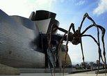 Bilbao and Guggenheim Museum Private tour. San Sebastian, Spain