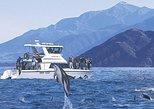 Kaikoura crucero de 12 horas con delfines desde Christchurch. Christchurch, NUEVA ZELANDIA