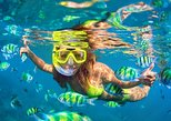 Bali Snorkeling Tour at Blue Lagoon Beach: All-Inclusive. Seminyak, Indonesia