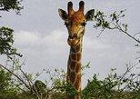 Safari & Golf Weekend - 2 days tour,