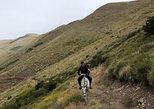 4hsHorseback Riding with snack in El Desafio, San Martín de los Andes, Argentina,