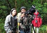 Birdwatching Experience. Monteverde, COSTA RICA